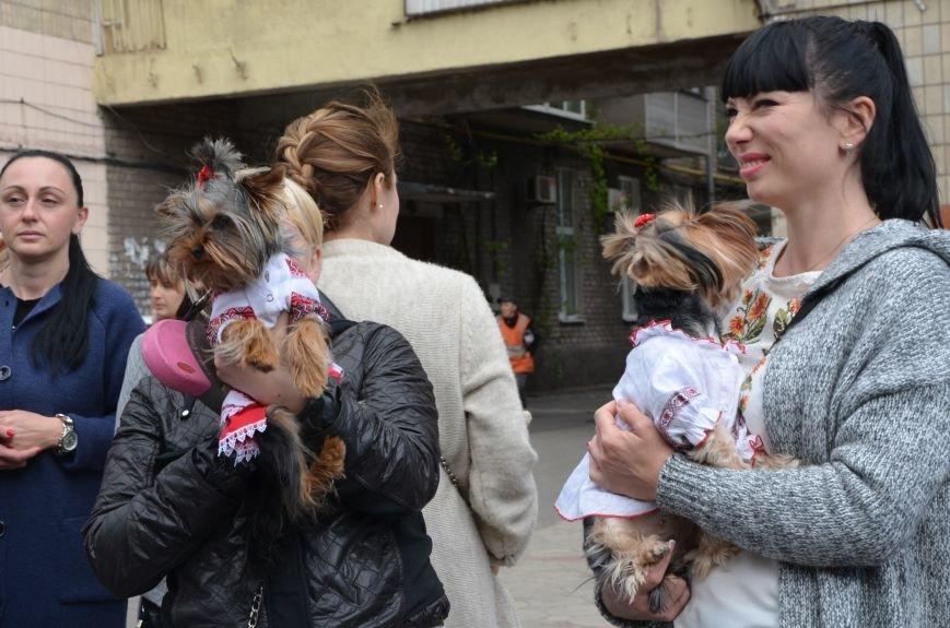 В Мариуполе прошел масштабный парад вышиванок (ФОТОРЕПОРТАЖ+ВИДЕО), фото-9