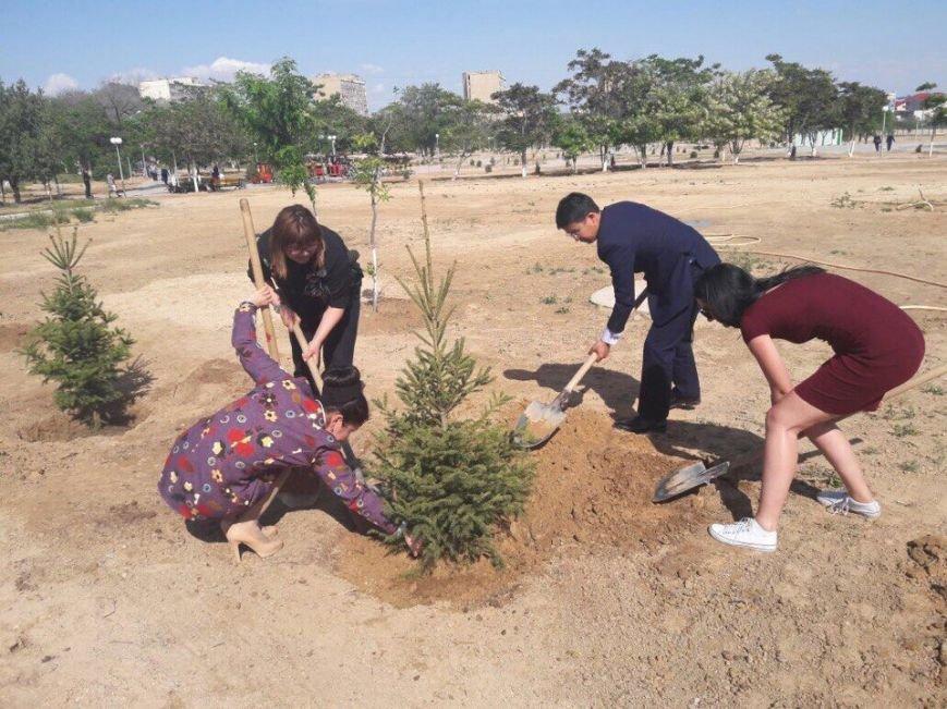 Предприниматели Актау подарят городу 1000 елок, фото-1