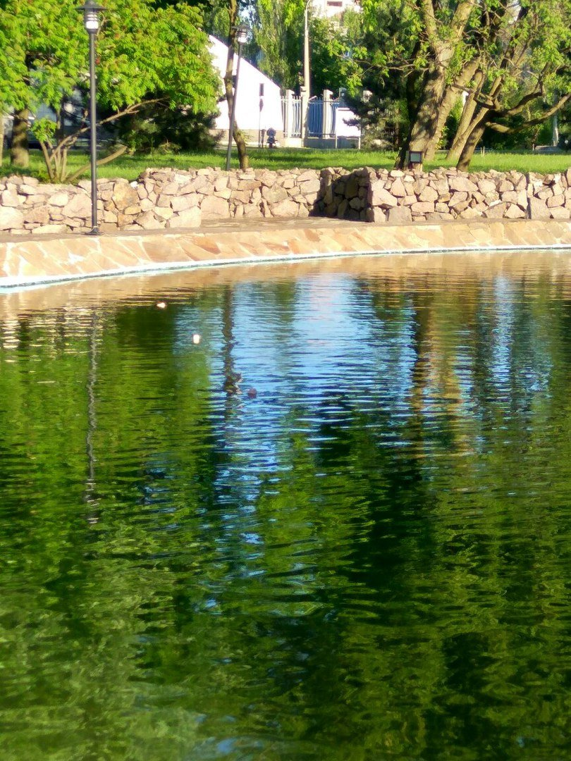 """Здесь рыба есть: В Донецке на прудах """"Виктории"""" поставили сети и раколовки (Фото), фото-2"""