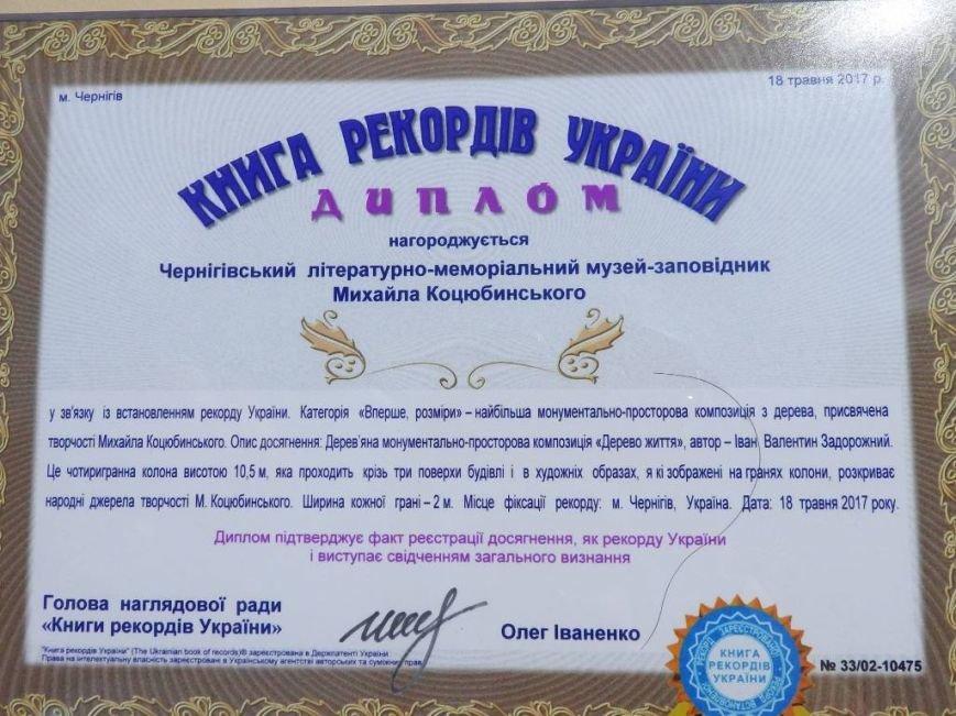 музей-Коцюбинського-рекорд-11
