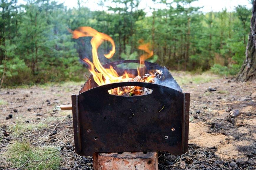 Идем на шашлыки правильно. Как устроить пикник в лесу и не получить штраф?, фото-2
