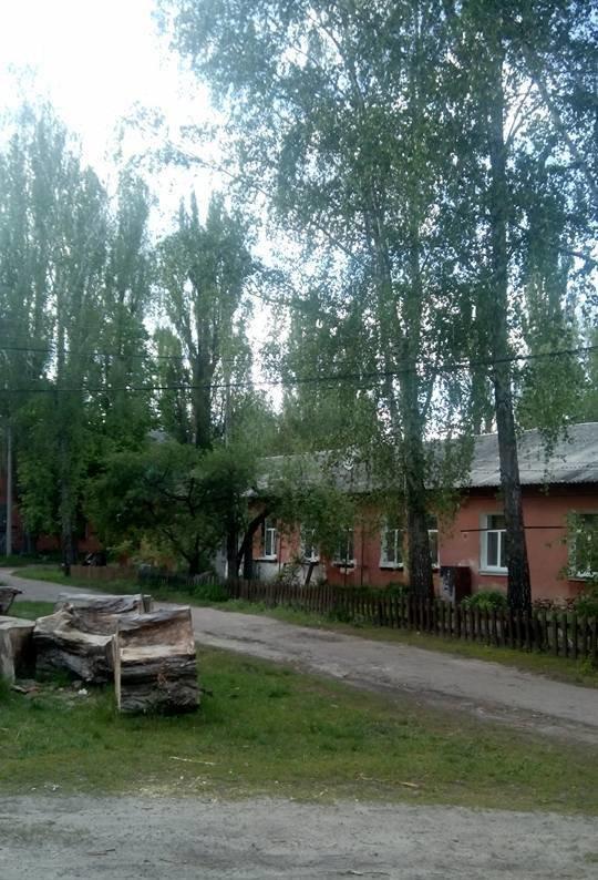 Жители Бобровицы уже неделю живут без электричества, фото-2