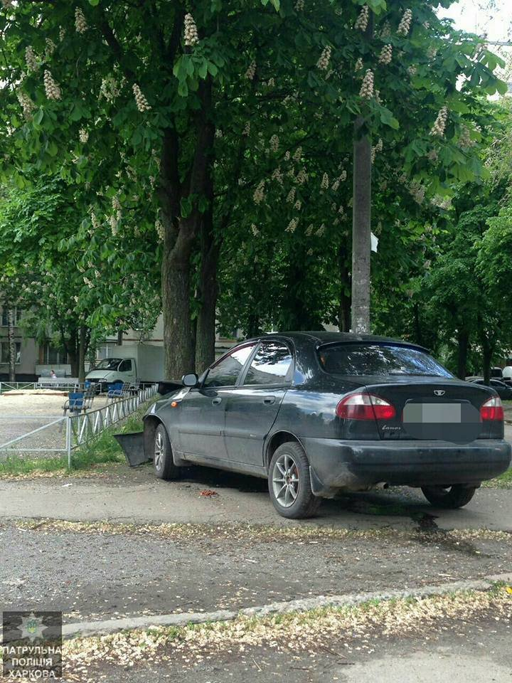"""На Спортивной пьяный водитель едва не снес детскую площадку. Машину """"остановило"""" дерево (ФОТО), фото-1"""