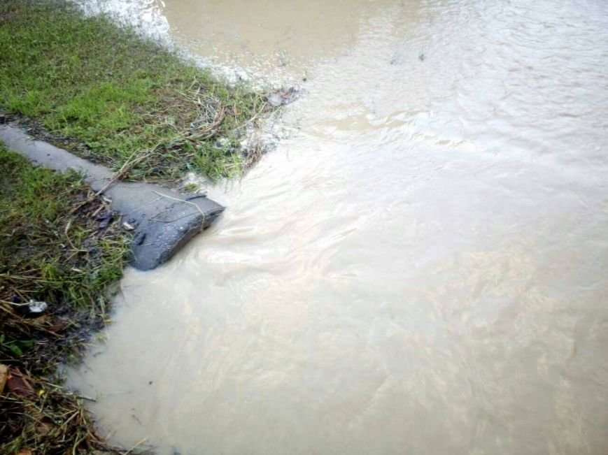 Негода на Закарпатті - підтоплено близько ста дворогосподарств: фото, фото-4