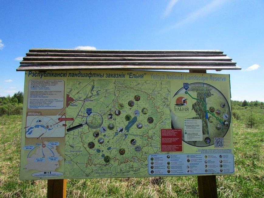 Место, благодаря которому в Полоцке и Новополоцке есть чем дышать: маршрут по уникальному болоту Ельня, фото-1