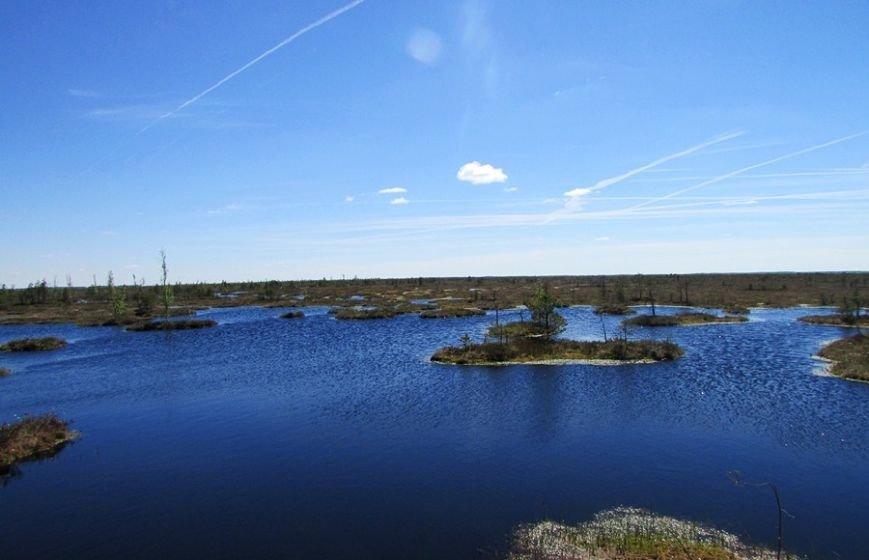 Место, благодаря которому в Полоцке и Новополоцке есть чем дышать: маршрут по уникальному болоту Ельня, фото-6