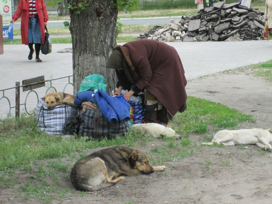 Життя на рубежі: Подорож до міст прифронтової зони у Луганську область, фото-6