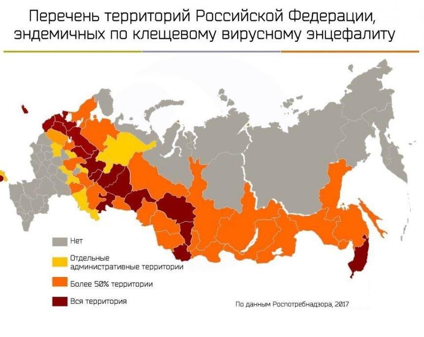 Ульяновск миновала эпидемия клещевого энцефалита, фото-1