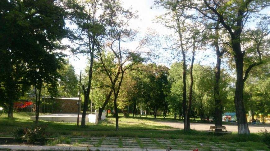 В Мирнограде горожан призывают навести порядок в парке им.Гагарина, фото-6