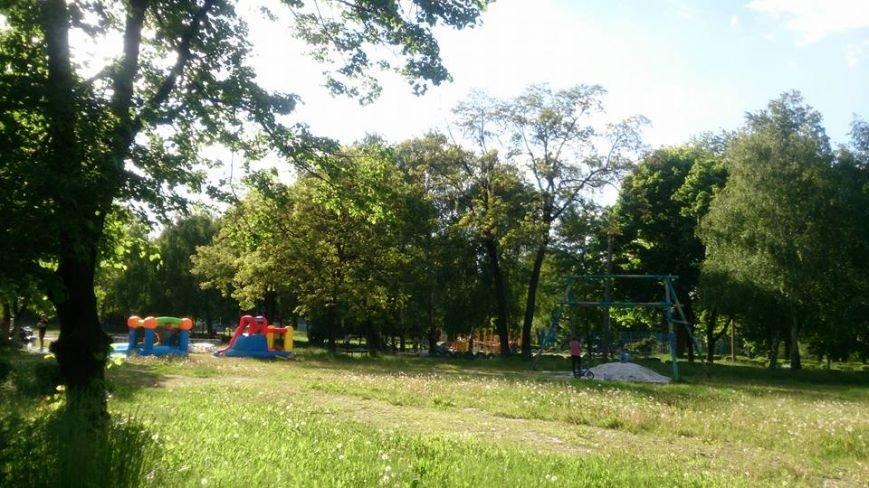 В Мирнограде горожан призывают навести порядок в парке им.Гагарина, фото-2