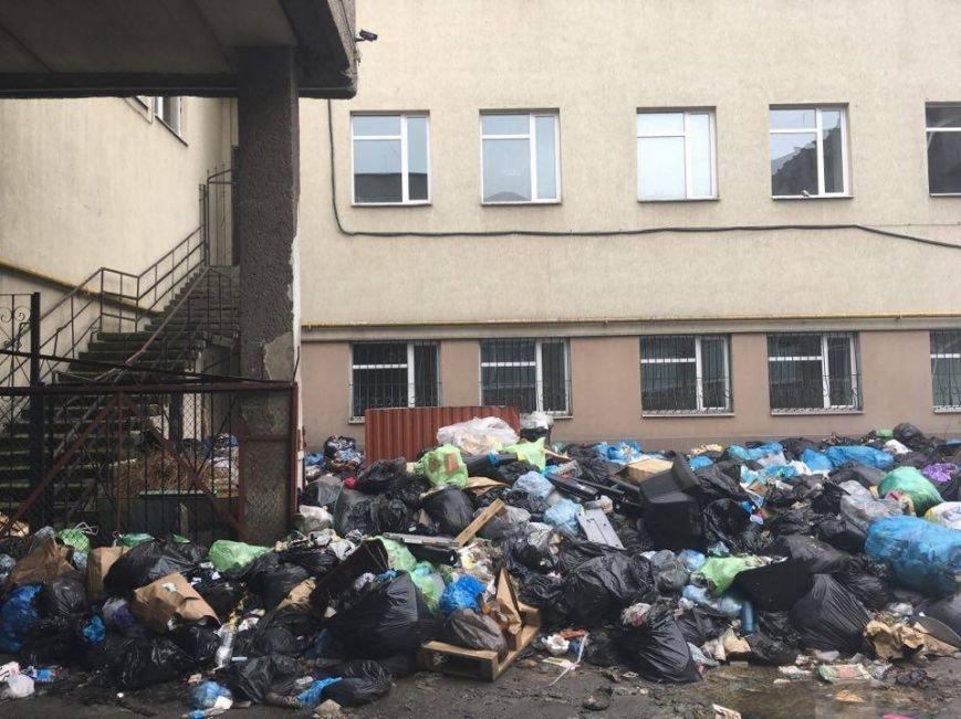 На проспекті Чорновола утворилося сміттєзвалище: відео та фото, які просто шокують, фото-1
