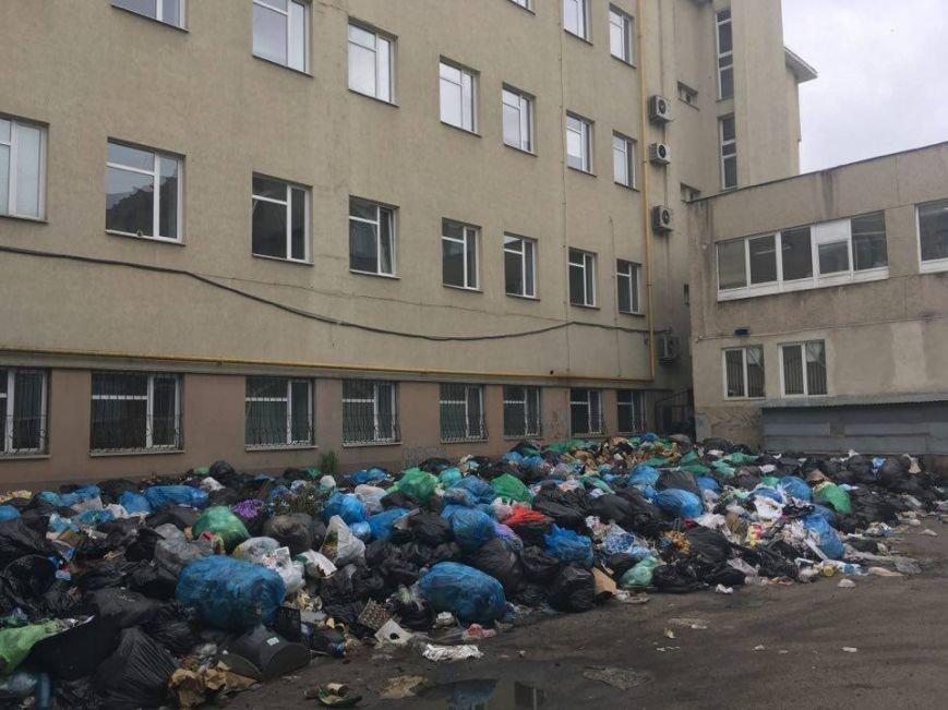 На проспекті Чорновола утворилося сміттєзвалище: відео та фото, які просто шокують, фото-2