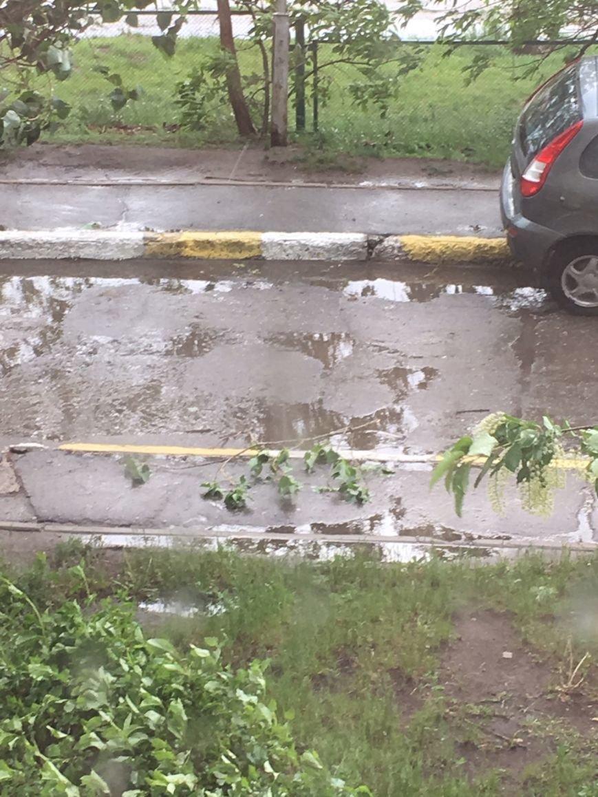 Ураган наломал дров в Ульяновске. ФОТО, фото-5