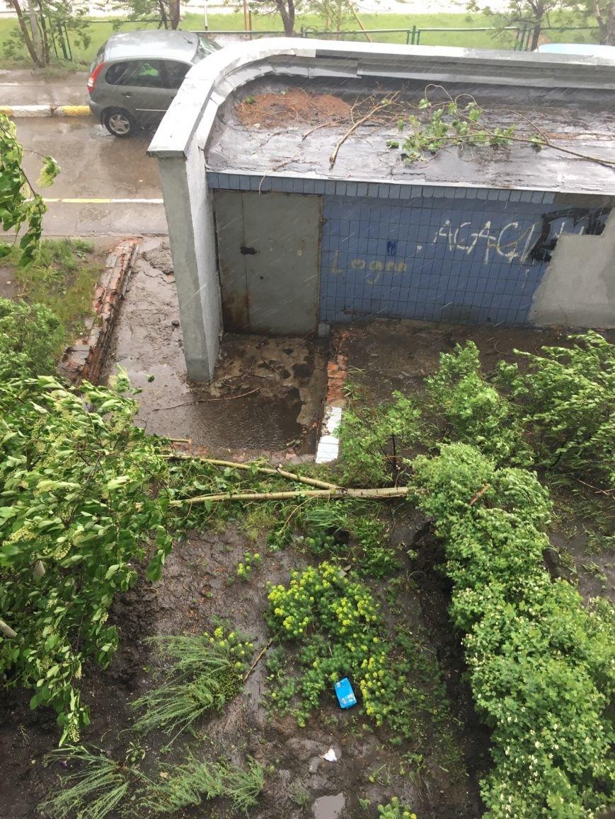 Ураган наломал дров в Ульяновске. ФОТО, фото-4