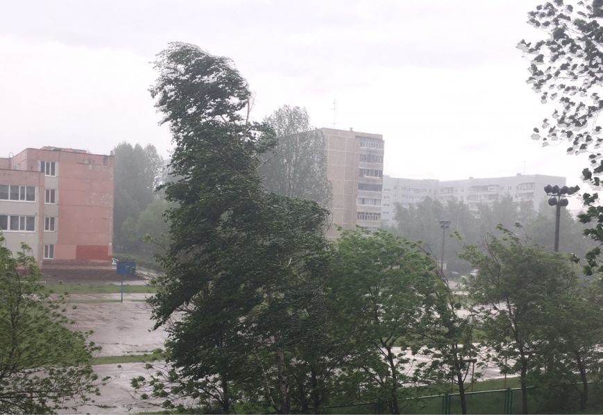 Ураган наломал дров в Ульяновске. ФОТО, фото-1