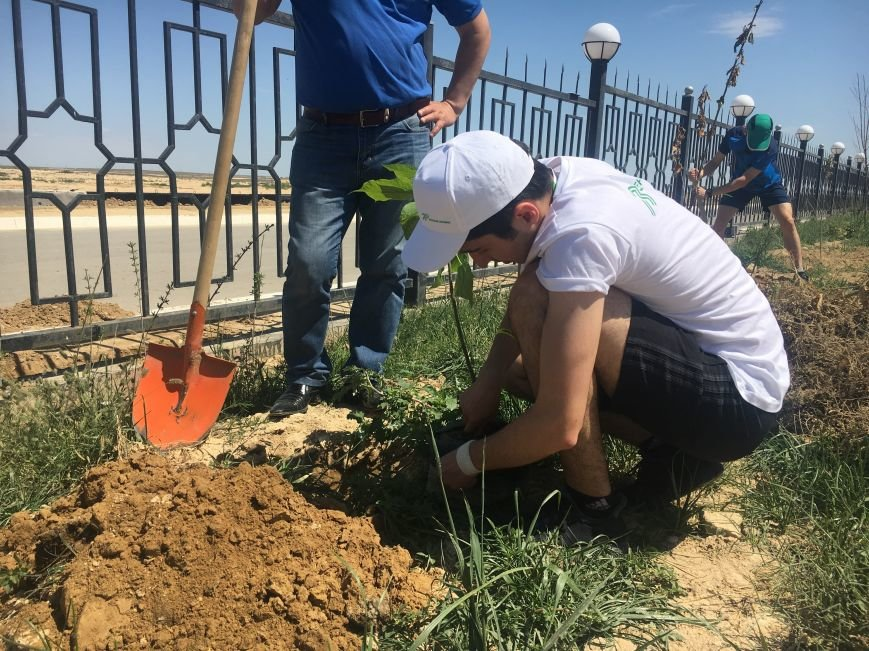 "Жители Актау стали призерами ""Зеленого марафона"". Видео, фото-30"
