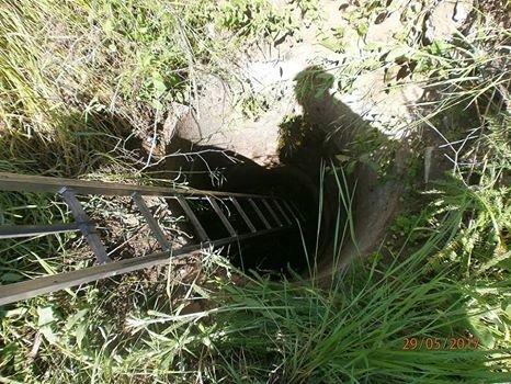 В Мариуполе  спасатели вытащили собаку  из колодца (Фотофакт), фото-3