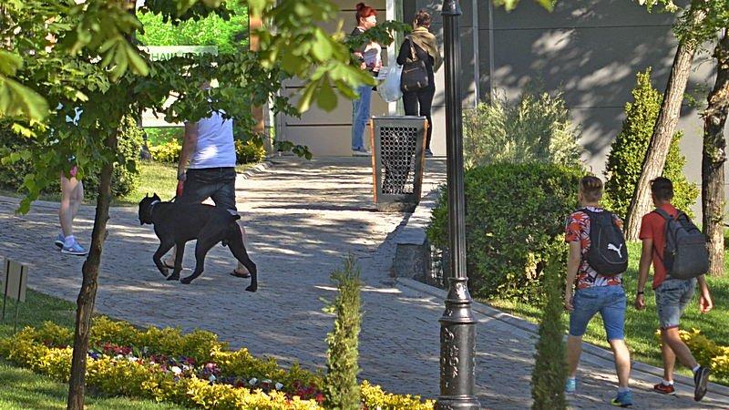 Новый одесский парк облюбовали бескультурные собаководы (ФОТО), фото-2