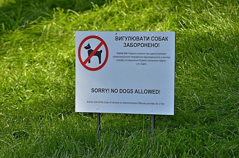 Новый одесский парк облюбовали бескультурные собаководы (ФОТО), фото-7
