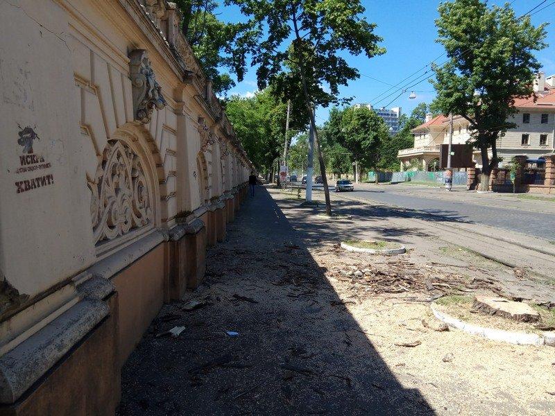 Одесские коммунальщики лишили Французский бульвар деревьев и остановки (ФОТО), фото-8