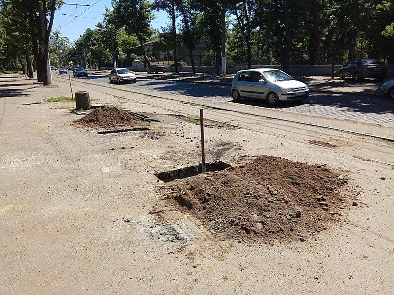 Одесские коммунальщики лишили Французский бульвар деревьев и остановки (ФОТО), фото-2