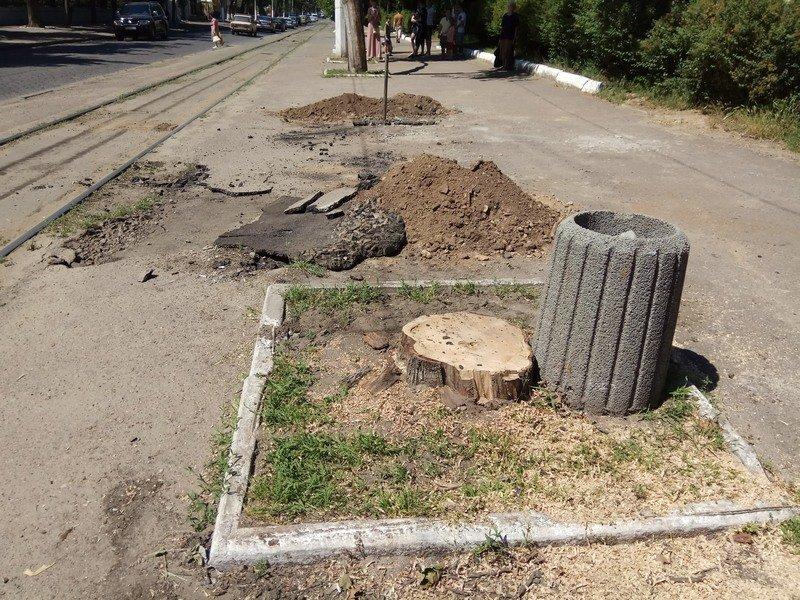Одесские коммунальщики лишили Французский бульвар деревьев и остановки (ФОТО), фото-4