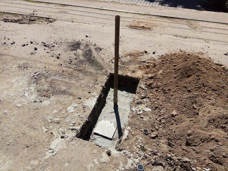 Одесские коммунальщики лишили Французский бульвар деревьев и остановки (ФОТО), фото-3