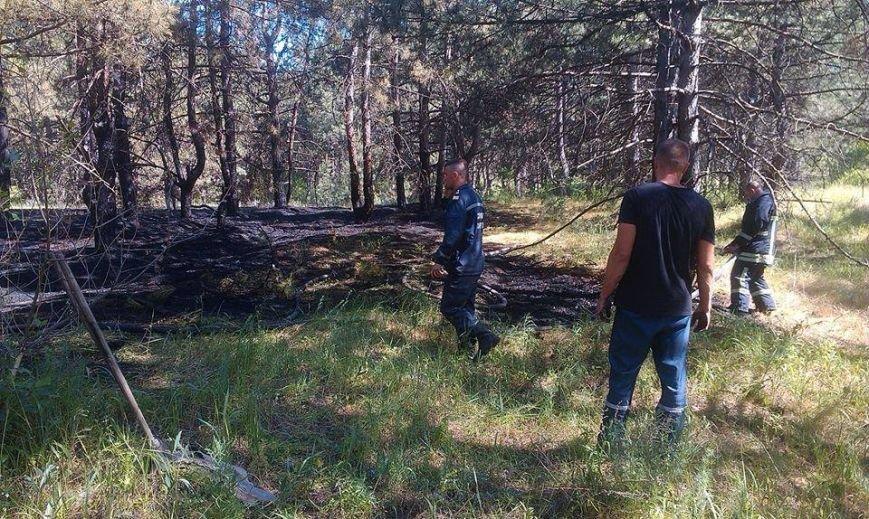 На запорожской Хортице неизвестные устроили поджог, – ФОТО, фото-1