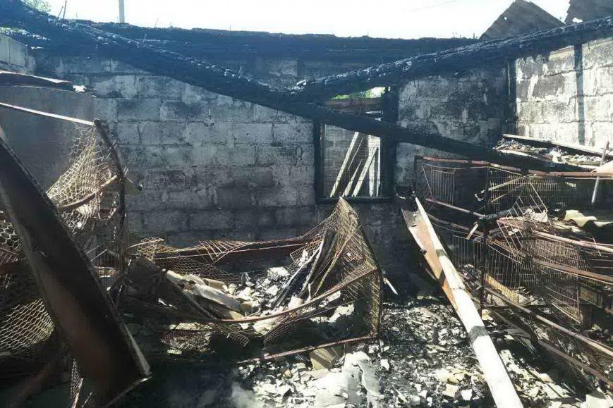 В Змиеве горела хозяйственная постройка. Огонь едва не сжег жилой дом (ФОТО), фото-1