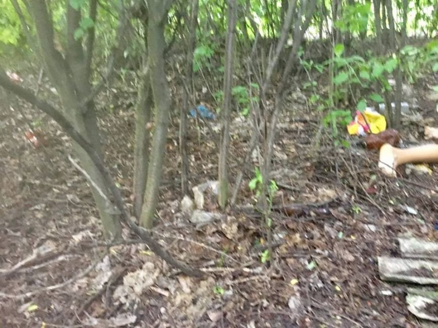 НаДонбассе изверг изнасиловал иубил 14-летнюю девочку