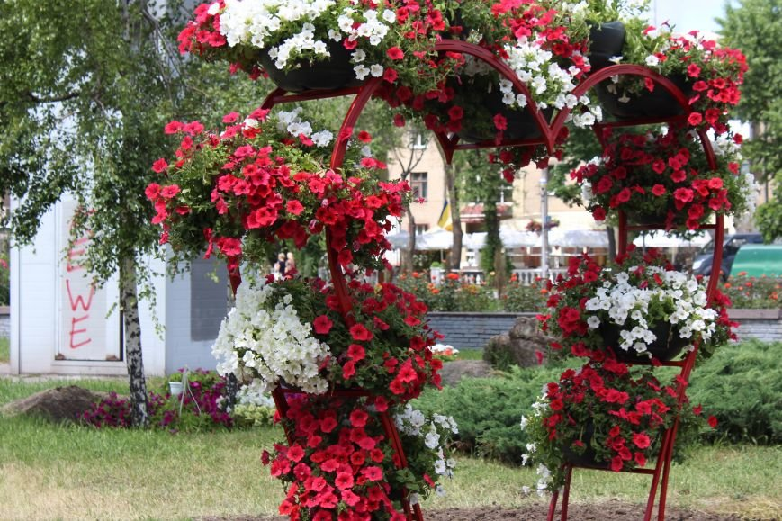 Клумба-тризуб, странный зонтик и засохшие тюльпаны: где в Запорожье высадили тысячи цветов и как это выглядит, - ФОТОРЕПОРТАЖ, фото-5