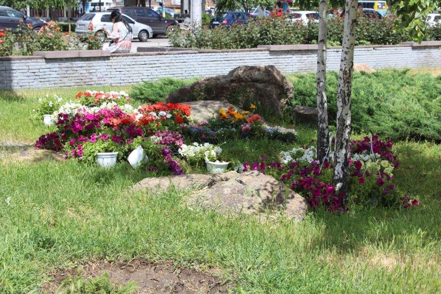 Клумба-тризуб, странный зонтик и засохшие тюльпаны: где в Запорожье высадили тысячи цветов и как это выглядит, - ФОТОРЕПОРТАЖ, фото-6