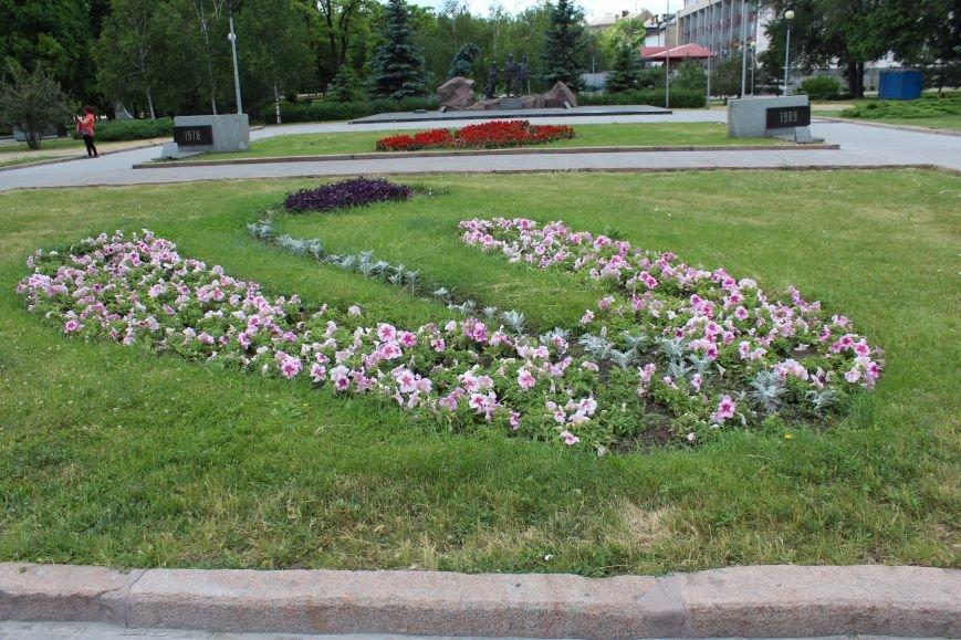 Клумба-тризуб, странный зонтик и засохшие тюльпаны: где в Запорожье высадили тысячи цветов и как это выглядит, - ФОТОРЕПОРТАЖ, фото-9
