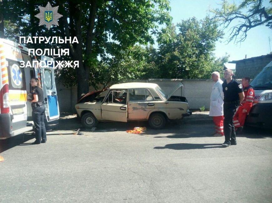 В Запорожье на Шевченковском авто врезалось в дерево: пассажир погиб, - ФОТО, фото-1