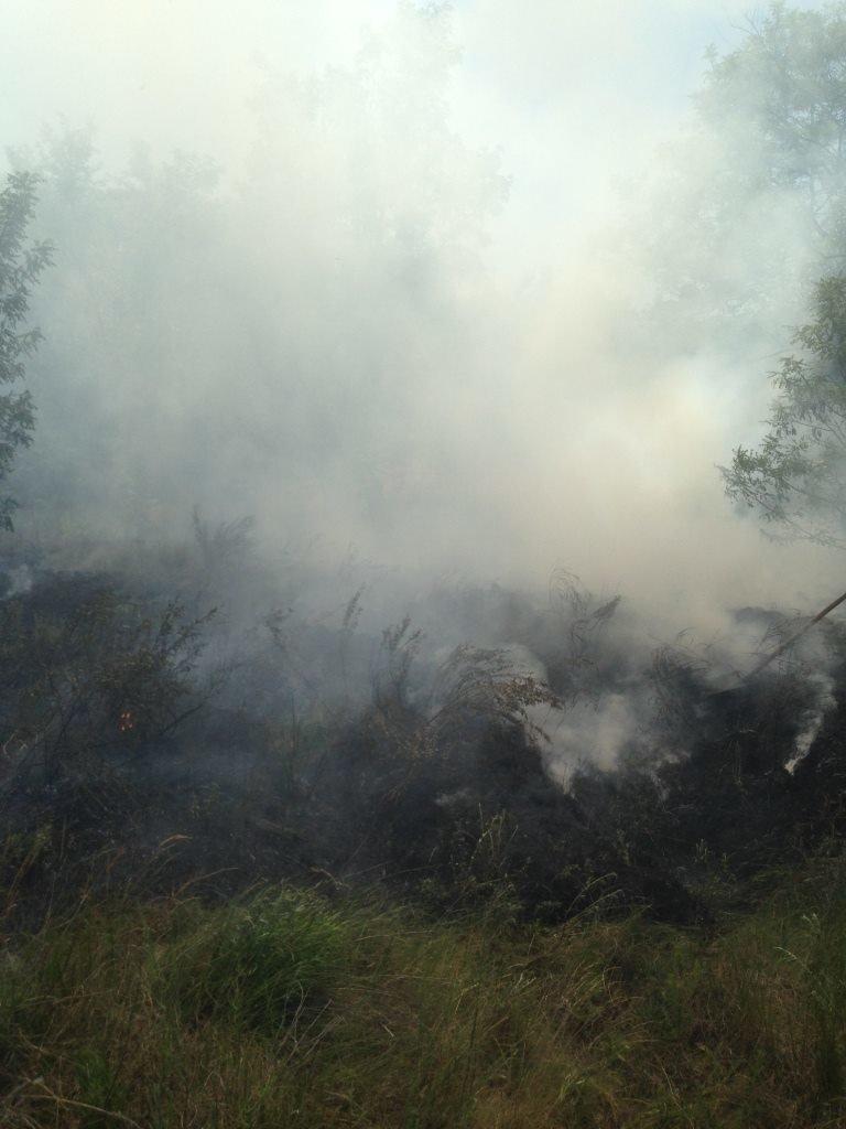 На Хортице попытались поджечь «Запорожскую Сечь»: пожар остановили, – ФОТО, фото-4
