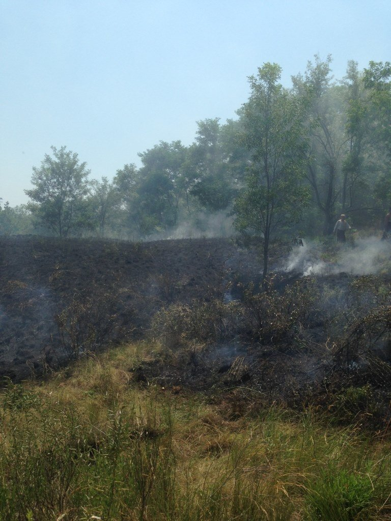 На Хортице попытались поджечь «Запорожскую Сечь»: пожар остановили, – ФОТО, фото-3
