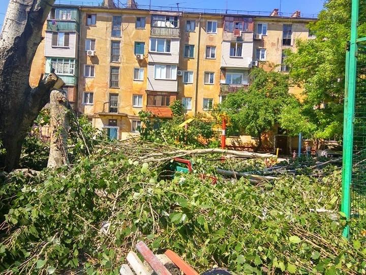 В Мариуполе старый тополь чуть не упал на детскую площадку (ФОТО), фото-2