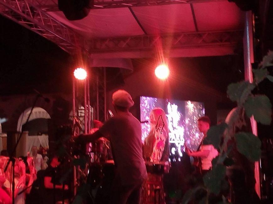 Билык в Одессе вышла на сцену, а Стерненко схватили копы (ФОТО, ОБНОВЛЕНО, ВИДЕО), фото-4