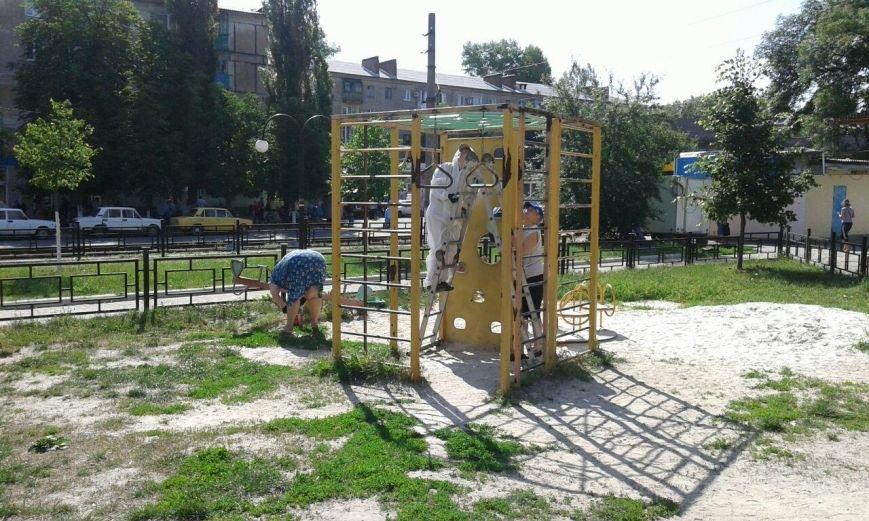 Волонтеры облагораживают городские детские площадки (ФОТО), фото-3