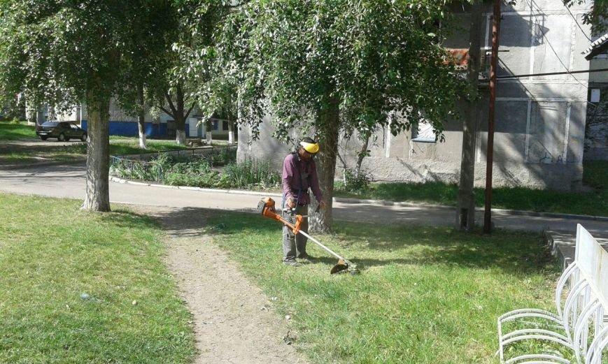 Волонтеры облагораживают городские детские площадки (ФОТО), фото-2