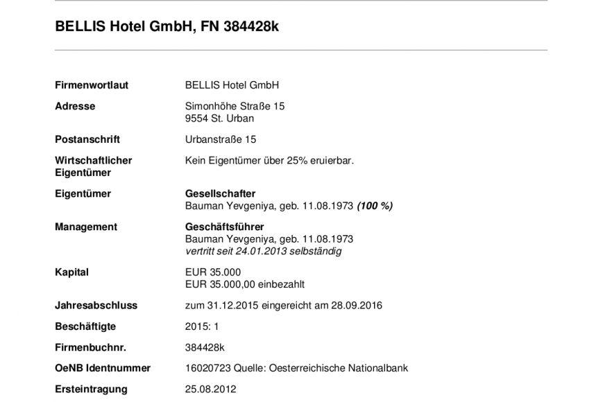 Гостиница в Австрии и частные дома: как распорядился деньгами бывший директор «Мариупольтеплосети» (ФОТО, ДОКУМЕНТЫ), фото-6