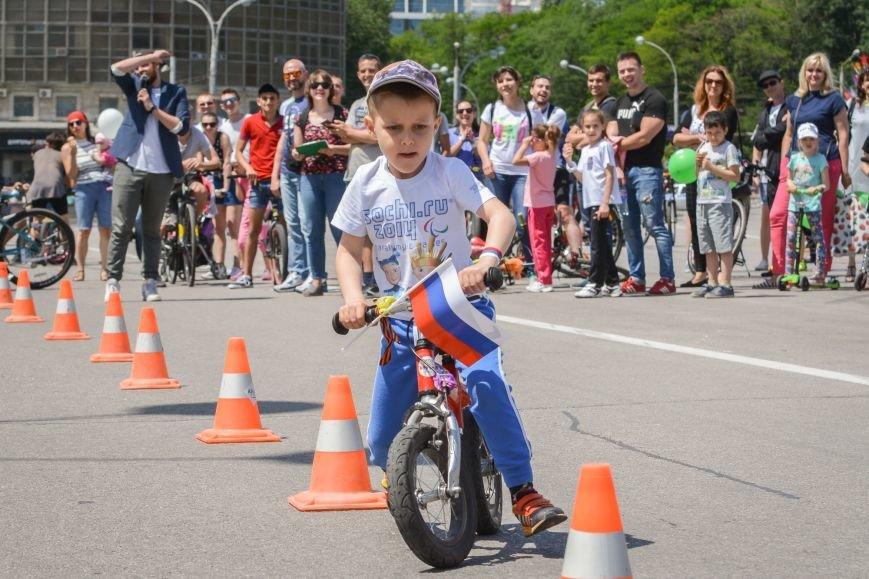 День России проходит в Ростове: в программе пробег, велопробег и парусная регата, фото-2