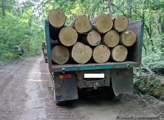 В Змиеве полиция задержала 2 грузовика с ворованной древесиной (ФОТО), фото-3