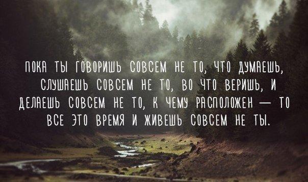 карлов1