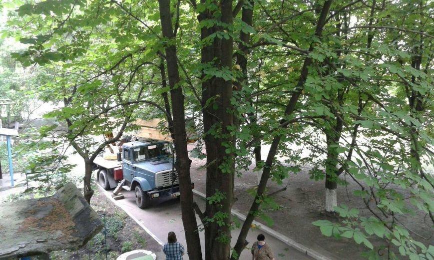 Авдеевские коммунальщики приступили к санитарной обрезке деревьев (ФОТОФАКТ), фото-2