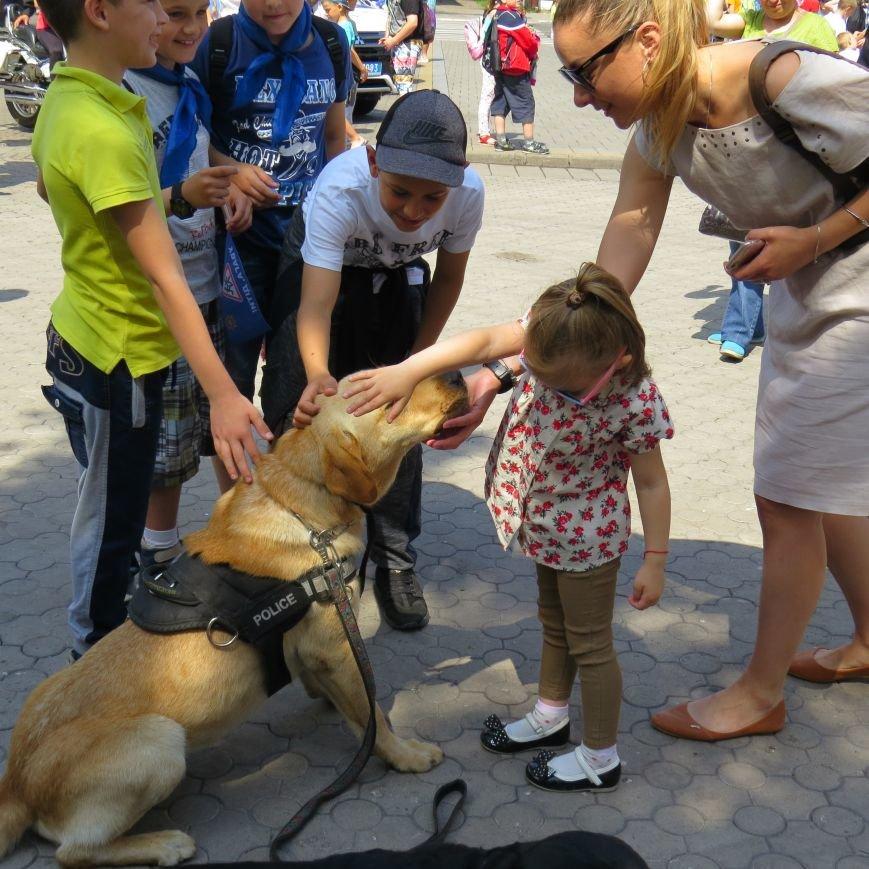 Полицейские собаки, куклы, байки и надувные светофоры. В Мариуполе прошел детский флэшмоб про ПДД (ФОТО), фото-16