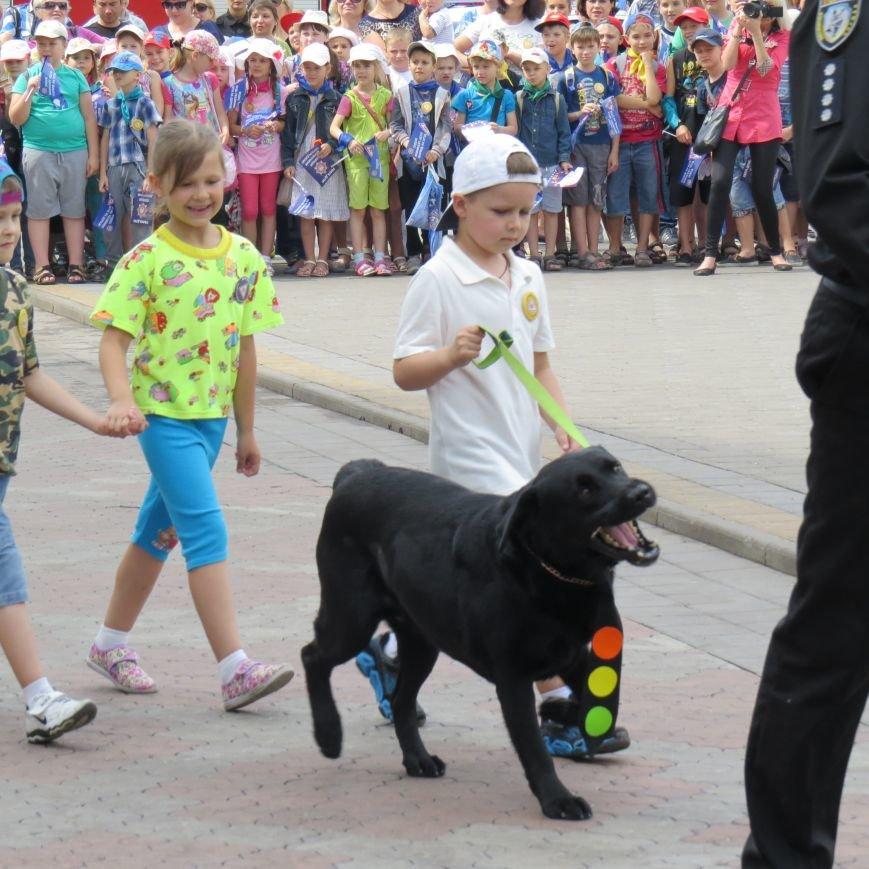 Полицейские собаки, куклы, байки и надувные светофоры. В Мариуполе прошел детский флэшмоб про ПДД (ФОТО), фото-12
