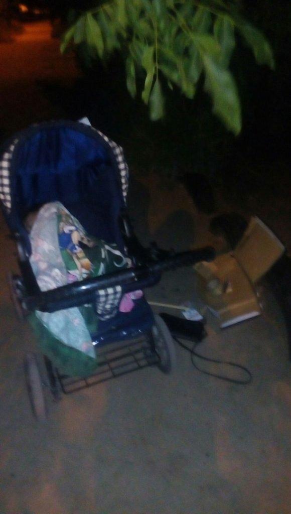В Запорожской области пьяная пара уснула в клумбе, оставив на обочине коляску с ребенком, - ФОТО, фото-1