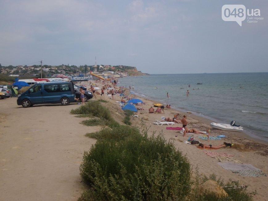 Тет-а-тет с природой: рейтинг лучших диких пляжей вблизи Одессы (ФОТО), фото-2