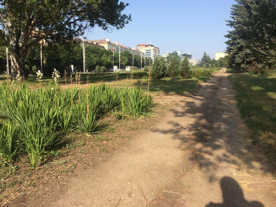 Административную площадь Мариуполя отремонтирует греческий инвестор (Дополнено, ФОТО, ВИДЕО), фото-2